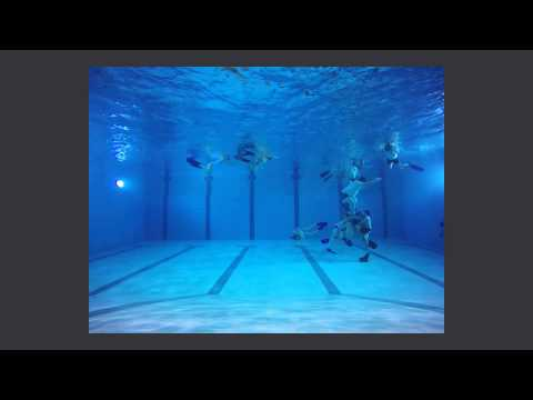 Luxembourg Underwater Rugby (Training 07/01/2015)