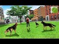 Dog Simulator 2017 Pet Games - Android Gameplay HD
