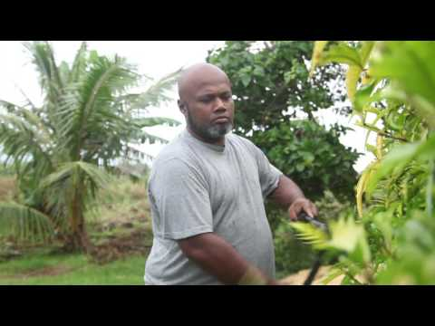 Tonga: Regaining Health After a Heart Disease