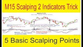 M15 Forex Scalping Strategy | Moving Average + MACD Indicator Trick in Urdu & Hindi by Tani Forex