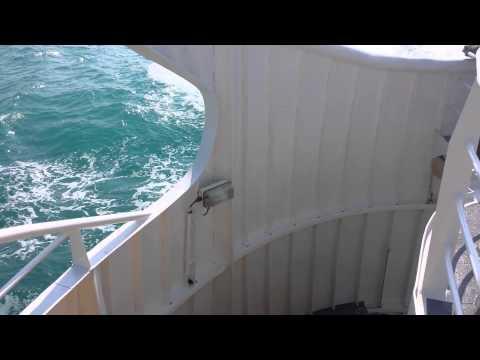 Trip to Dalma Island Abu Dhabi