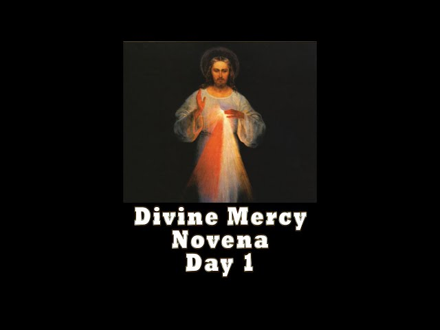 Divine Mercy Novena Day 1 with Father Mike Barry