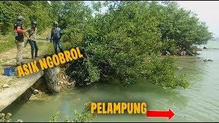 Video Nggak Sadar Pelampung Tenggelam ditarik Ikan.. Mancing Pinggiran Umpan Udang Hidup di Pinggir Laut download MP3, 3GP, MP4, WEBM, AVI, FLV Oktober 2018