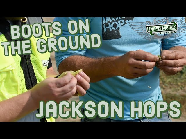 Boots on the Ground: Jackson Hops with Russell Shoemaker