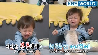 [1ClickScene] William's dogs snatched his dumpling away!!! (TROS Ep.213)