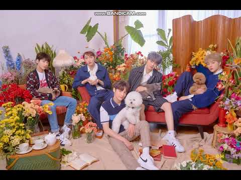 txt---cat-and-dog-(english-ver)---1-hour