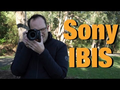 Sony In Body Image Stabilisation test (IBIS)