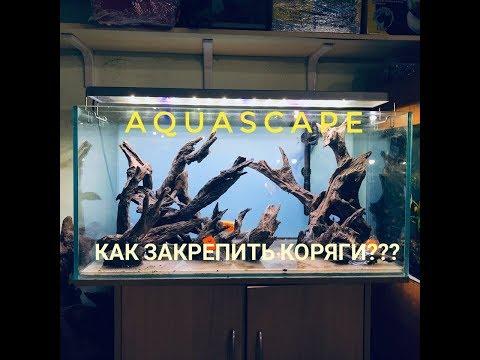 Коряги в аквариуме. Как закрепить? Акваскейп от Aquayozh. Перезапуск аквариума