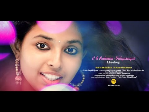 AR Rahman - Vidyasagar Tamil Hit Songs Mashup | Haritha Balakrishnan ft. Sumesh Parameswar | HD 2016