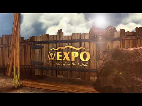 Zonta Expo 2017