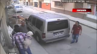 Gözü dönmüş bir kedi sahibiyle dolaşan köpeğe saldırdı