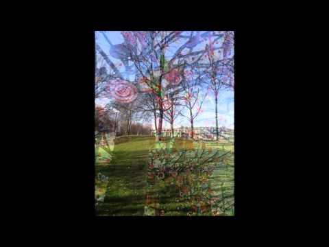 De Droomboom  |  Vakopdracht 1.2 Muziek