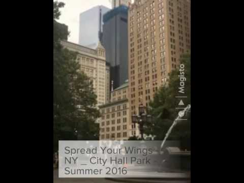 Spread Your Wings - NY _ City Hall Park - Summer 2016  (Cre