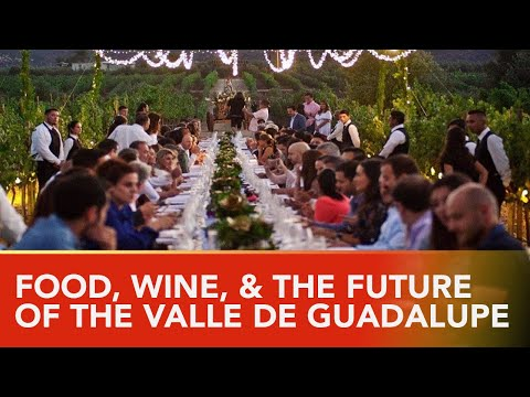 The Food & Wine🍷 Of Mexico's Wine Country.  One of the Last Untapped Wine Regions of the World.