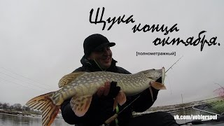 Твичинг поздней осенью. Ловля щуки на озере. Видео отчет от 24.10.2015 г.