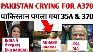 Pakistan crying after india revoked article 370 & 35A   Historic Day for india   पाकिस्तान पगला गया
