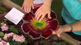 Choice Of Hummingbird Or Flower Design Birdfeeder On Garden Stake With Carolyn Gracie