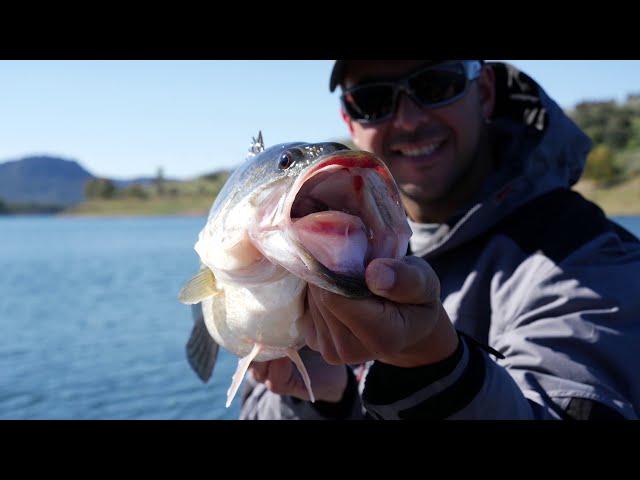 Nuestra vida, la pesca!!!