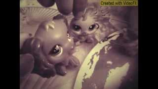 Music video:Littlest Pet Shop:SwEeT LPS:Время и стекло