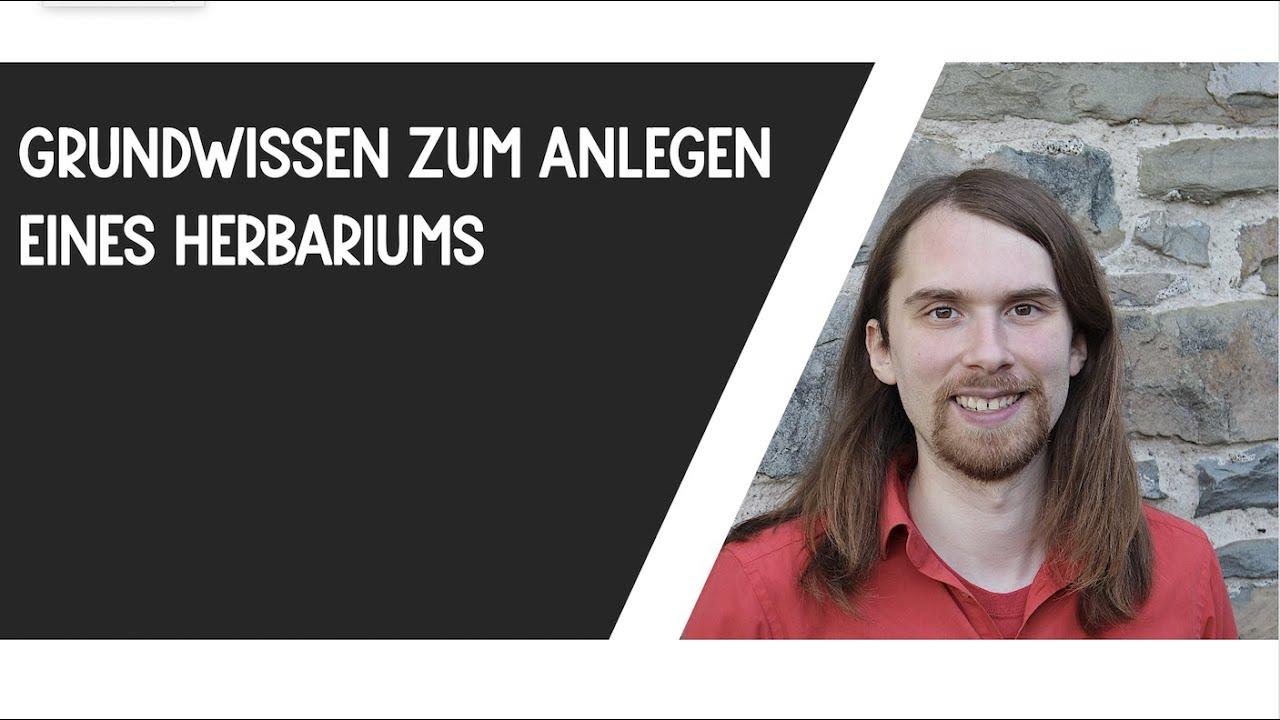 Grundwissen Zum Anlegen Eines Herbariums Reupload Youtube