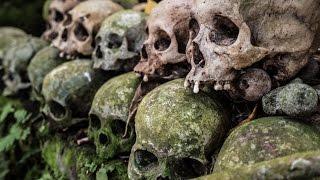 Skull Island Found Human Remains *GRAPHIC WARNING*