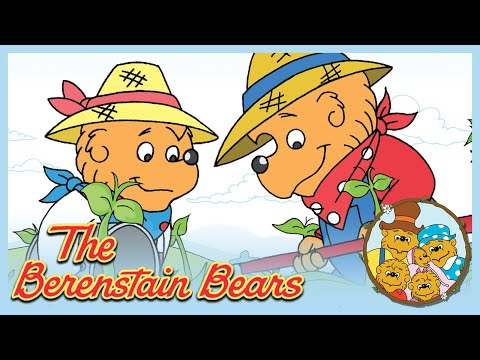 Berenstain Bears: The Summer Job/ The Big Red Kite - Ep.21