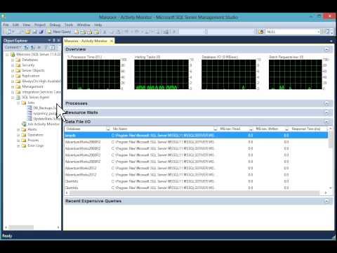 Activity Monitor in SQL Server 2012 [HD]