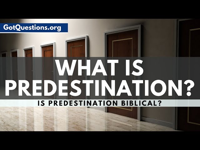 What is Predestination? | Predestination in the Bible | GotQuestions.org