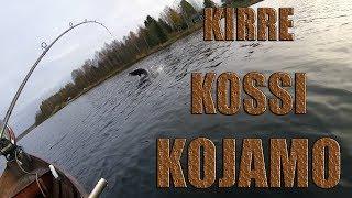 Kirre, Kossi, Kojamo