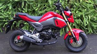 Honda Grom Review