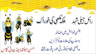 What are the benefits of royal jelly | ROYAL JELLY Shahad ke fawaid in Urdu - Hindi