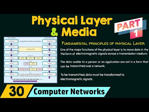 Physical Layer and Media (Part 1)