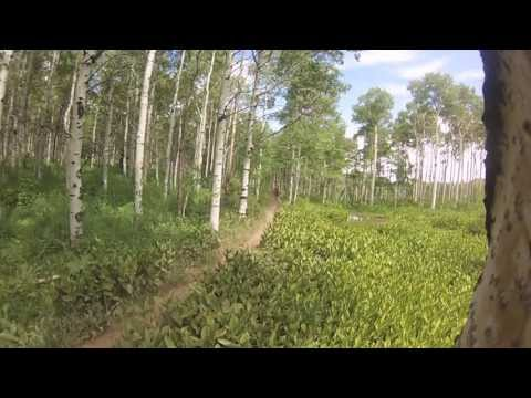 Mountain Biking in American Fork Canyon, American Fork Overlook Trail, UT