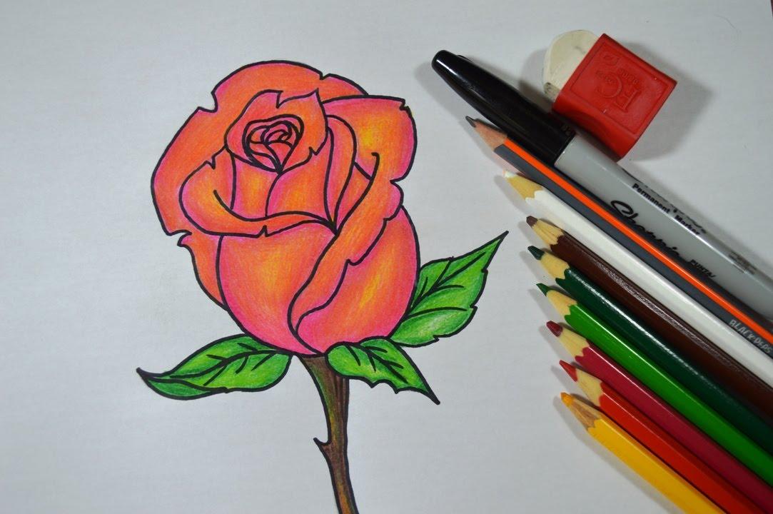 Como Desenhar E Colorir Rosa Passo A Passo Youtube