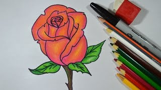 Como desenhar e colorir ROSA passo a passo
