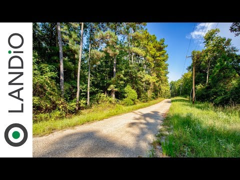 sold-by-landio-:-land-for-sale-in-texas-:-wooded-homesite-near-the-big-thicket-national-preserve