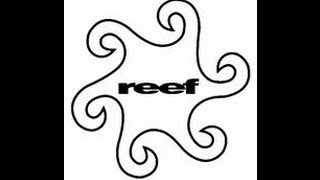 reef *new album* Lucky #5