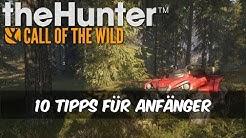 theHunter Call of the Wild - 10 Tipps für Anfänger