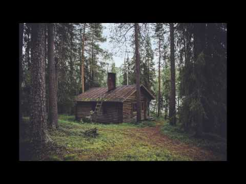 KOTA The Friend - Cabin In the Woods (AUDIO)