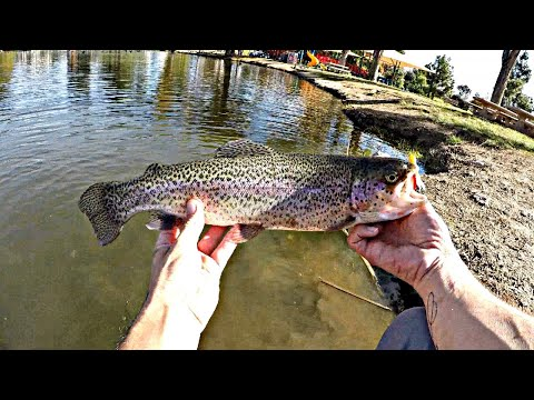 Fishing For Stocked Trout Using A Mini Jig!