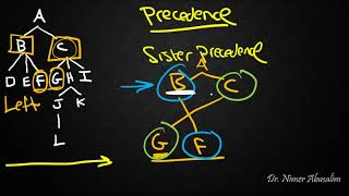 SYNTAX-11: Structural Relations (Precedence)