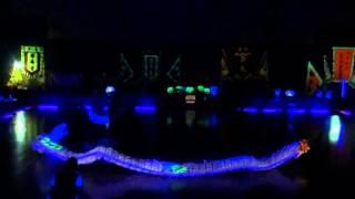 第十五屆全港公開夜光龍錦標賽 15th HK Open Lu