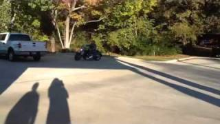 Motorcycle Riding Poodle