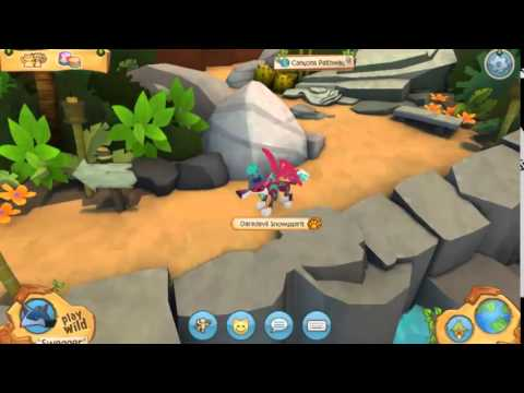 how to get animal jam play wild beta