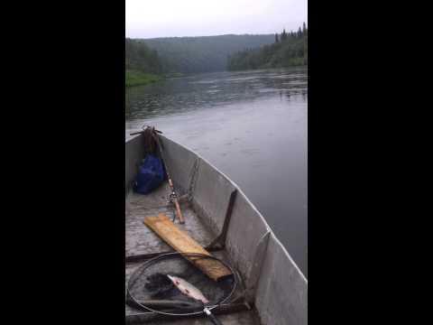 Металлическая лодка длиной 8.5м под мотором Марлин 6сил