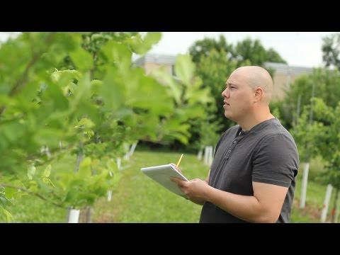 My Plant Path: Graduate Student Garrett Beier
