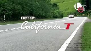 Taming the Prancing Horse: Ferrari