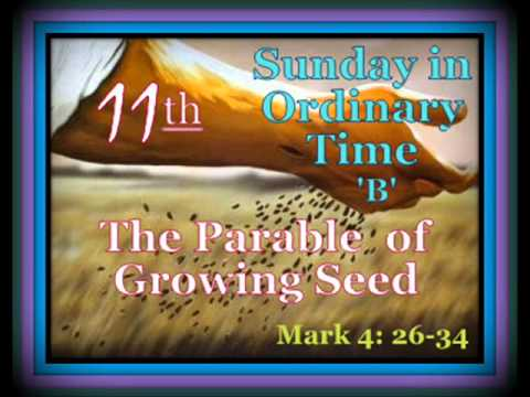 Image result for 11th sunday in ordinary time year b