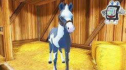 FOHLEN PFLEGEN UND FÜTTERN | Star Stable Horses App deutsch | Spiel mit mir Games