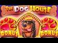 The Dog House Megaways 🐶 Bonus Buys 🔥 Can Random Michael Get a Big Win on a 4 Scatter Bonus⁉️
